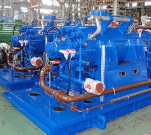 Ebara Large Pumps